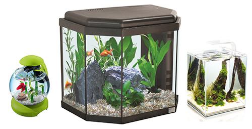 Формы аквариумов