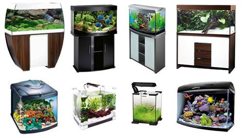 Разновидность форм аквариумов