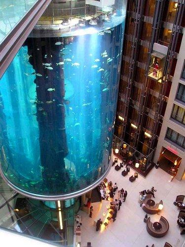 Необычные аквариумы.  Топ-9