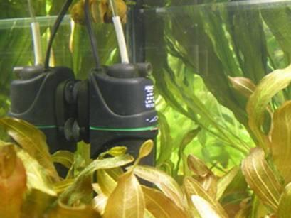 СО2 в аквариум | AQA.ru