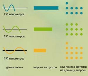 Количество фотонов на длину волны