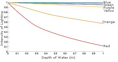 Поглощение водой разных лучей спектра, в зависимости от глубины