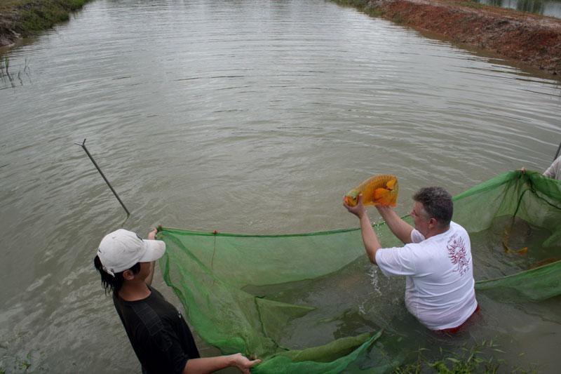 Как сделать ставок для рыбы 382
