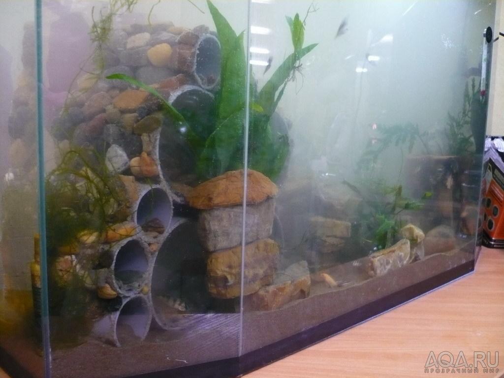 Сделать своими руками гроты в аквариуме