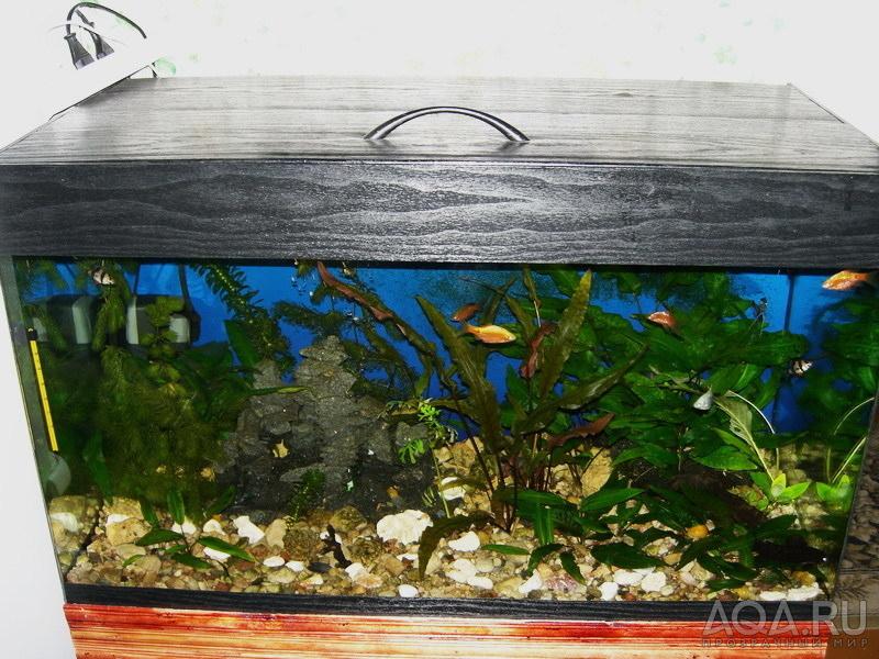 Крышка для аквариума 100 литров своими руками