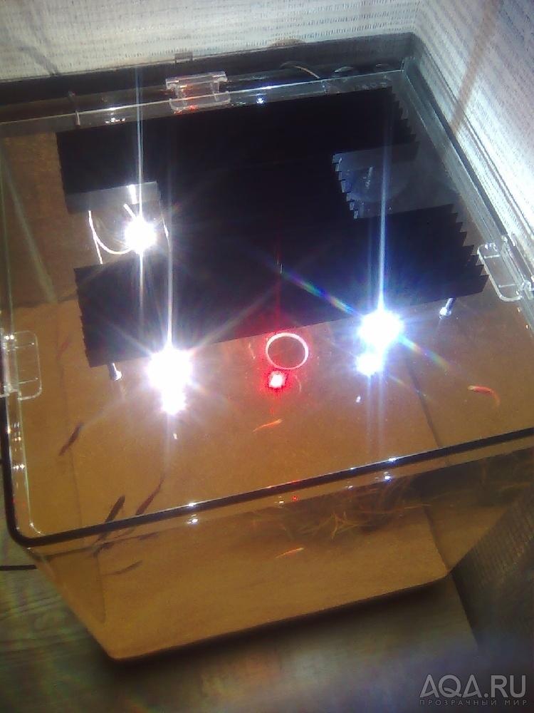 Как сделать диодную подсветку для аквариума