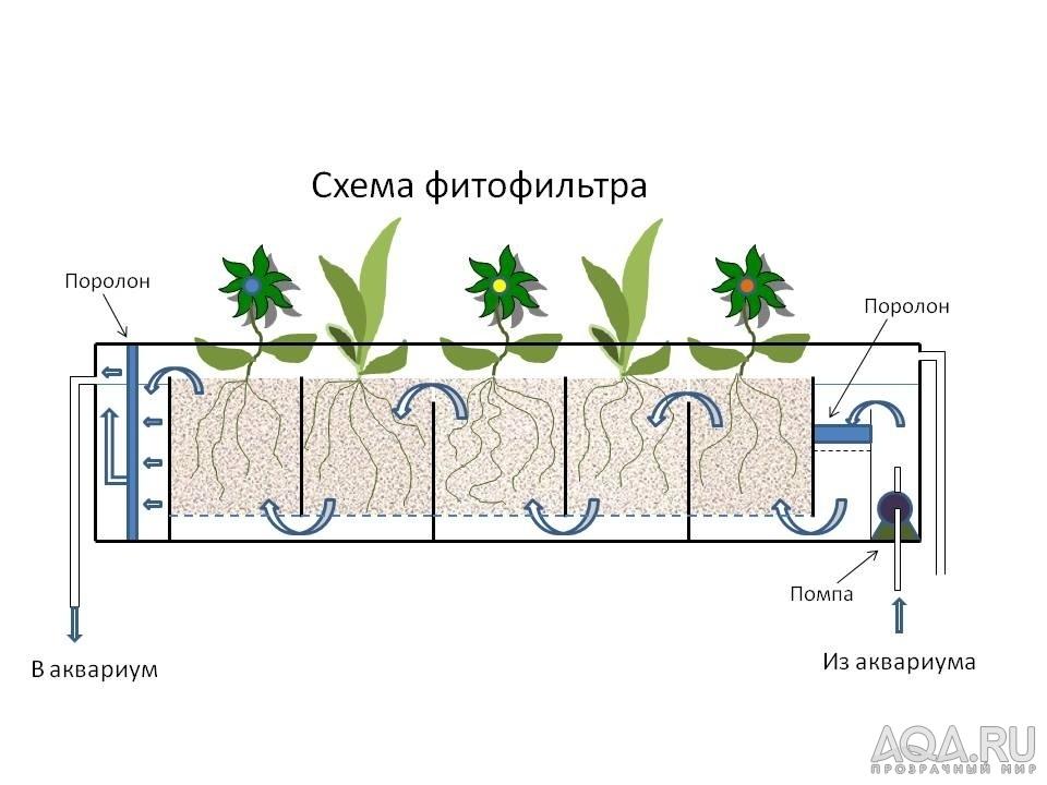 Как сделать фитофильтр