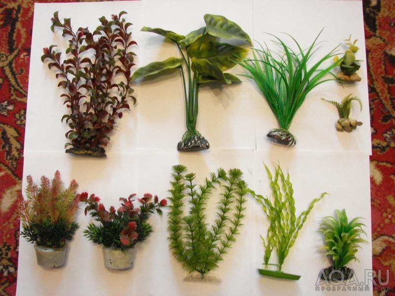 Растение для аквариума своими руками