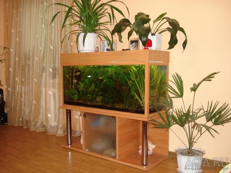 Тумба для аквариум своими руками 550