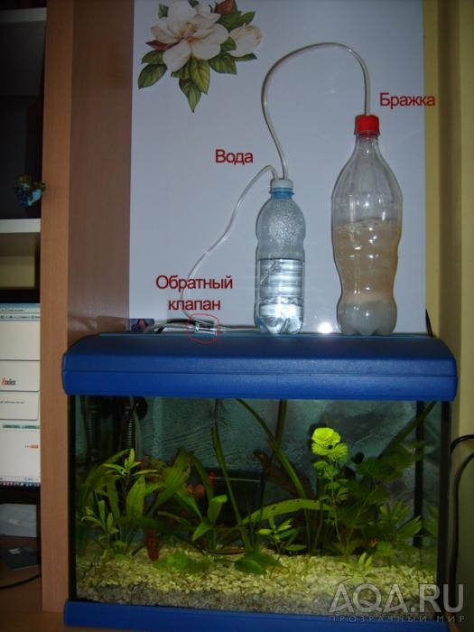 Брага своими руками для аквариума
