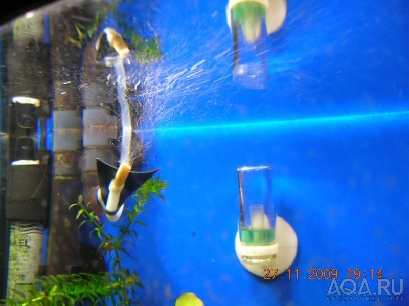 Со2 в аквариуме своими руками видео