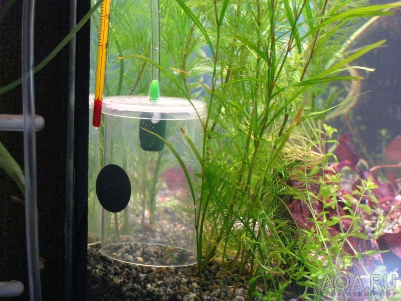 Колокол со2 в аквариум своими руками