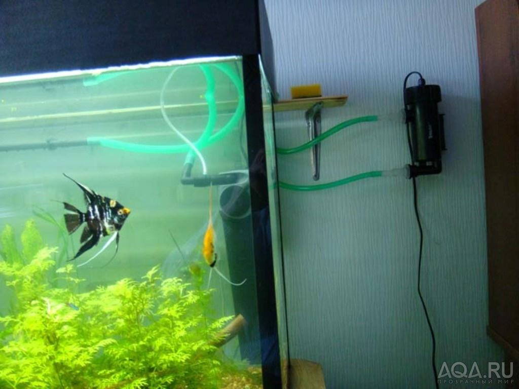 Стерилизатор в аквариуме своими руками
