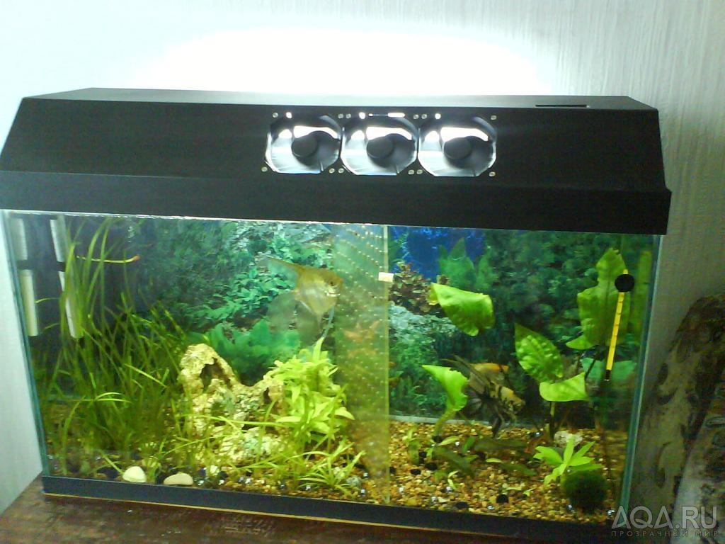 Система охлаждения аквариума своими руками