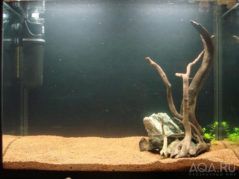 Дизайн аквариума 50 литров