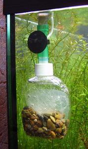 Со в аквариум своими руками