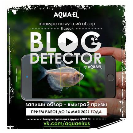 Стань аквариумным блогером!